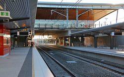 Spotted Gum Timber Ceiling Battens - Leppington Station