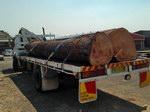 Reclaimed Logs