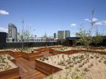 The Quays - Melbourne Docklands